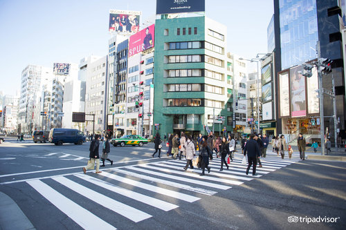 'Shibuya / Harajuku / Ebisu' from the web at 'http://media-cdn.tripadvisor.com/media/oyster/500/08/2e/30/94/shibuya--v7400025.jpg'