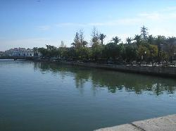 Tavira