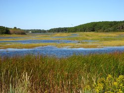 Wellfleet Bay Wildlife Sanctuary