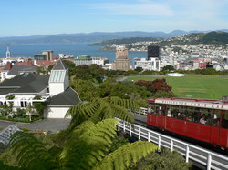 Wellington