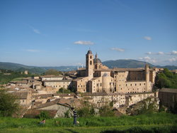 Urbino
