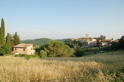 Castellina In Chianti