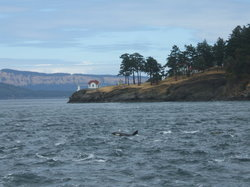 Orcas Island Eclipse Charters