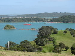 Waiheke-eiland