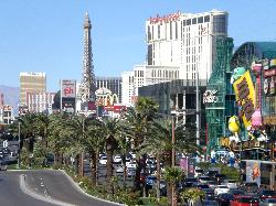 More of the strip