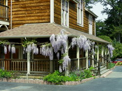 Point Reyes Seashore Lodge