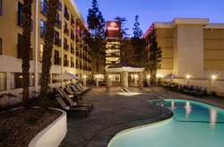 Hilton Stockton
