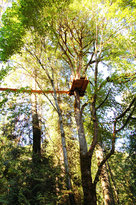 Adrena LINE Zipline Adventure Tours