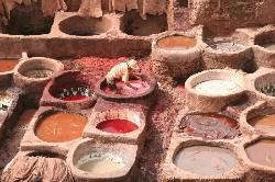 Fes tanneries 1 (25287201)