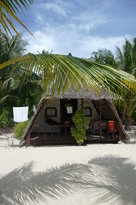 Coco Loco Island Resort