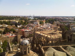 View from the Giralda + Alcazares Reales