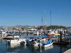 Water taxis, fishing boats and other watercraft at Cabo (28870816)