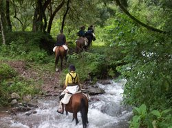 SAYTA Ranch - Horseback Riding Tours
