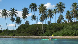 Barefoot Travelers Kayak Tour to Monkey Island