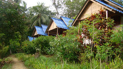 Koh Mook Had Farang Bungalow
