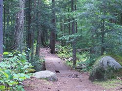 Brewster Peninsula Nature Trails