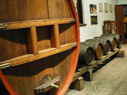 Ruby Tours - Extraordinary Food & Wine Tours