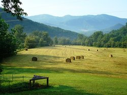 Compassionate Expressions Mountain Inn & Healing Sanctuary