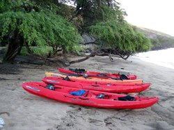 South Pacific Kayaks & Outfitters
