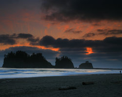 ‪Quileute Oceanside Resort‬