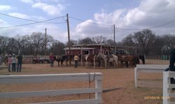 Thunderbird Riding Stables