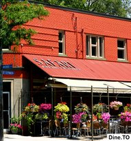Safari Bar & Grill - North York