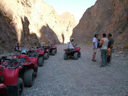 Canyon Motor Safaris