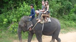 Extraordinary Elephant Day Trip