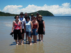 Daintree Discovery Tours