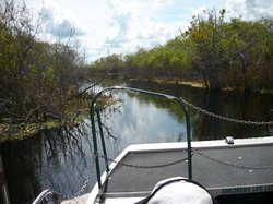 Camp Holly Fishing & Airboats