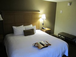 Hampton Inn & Suites Albany - Downtown