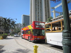 Aloha Bus - City Sightseeing