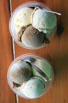 The Daintree Icecream Company