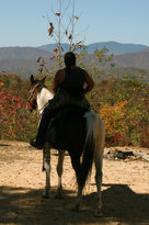 End of the Trail Horseback Riding