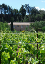 Domaine de Creva Tinas
