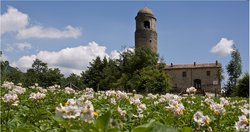 Agriturismo Montagna Verde