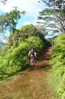 Kuilau Ridge Trail