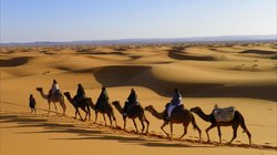Morocco Experience Tours -  Day Tours
