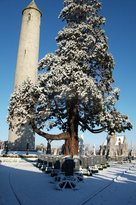 Glasnevin Museum
