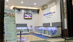 Doctor Fish - Foot Spa & Reflexology