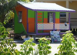 Placencia Adventures by Land or Sea - Day Tours