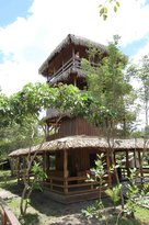 Amazon Antonio Jungle Tours - Day Tour