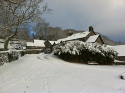 Gwynfryn Farm Cottages and B&B
