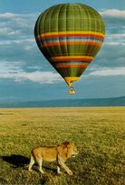 Pounds East Africa Safaris - Balloon Safari
