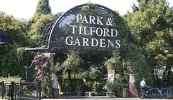 Park & Tilford Gardens