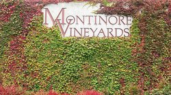 Montinore Vineyards