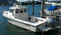Patriot Wave Charters
