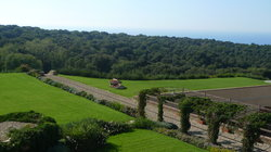 Tuscan Tour - Day Tours