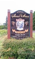 Anne Amie Vineyards