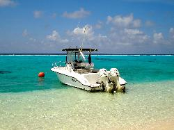 Cool Breeze Boat Charters- Day Boat Tours